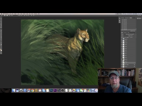 Aaron Blaise Live Stream - Digital Illustration Florida Panther