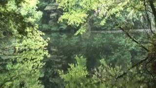 讃美歌122番 緑も深き若葉の里 緑も深き若葉の里 ナザレの村よ汝がち...