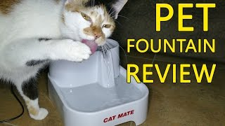 Cat Mate Pet Drinking Fountain | Why it's GOOD for your cat!