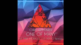 Chris Wayfarer - One Of Many (Mike Morales Remix) image