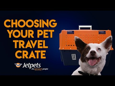 How To Choose Your Pet Travel Crate