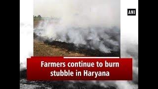 Farmers continue to burn stubble in Haryana - #ANI News