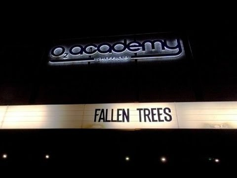 Fallen Trees - Devil's Payroll