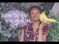 How To Go Vegan! | 5 Tips