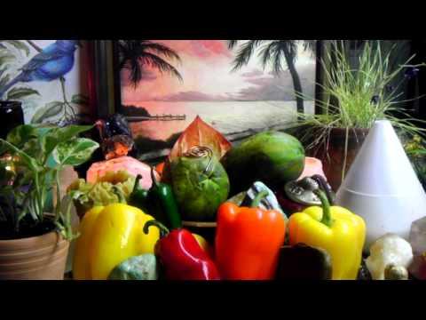 Papaya Seeds Eliminate Parasites, Intestinal Worms, Candida, Liver Regeneration, Vibrant Skin
