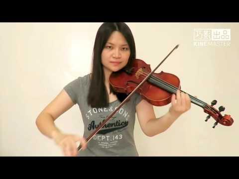 Sia - The Greatest(Violin Cover)