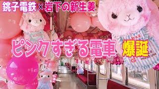 【銚子電鉄❌岩下の新生姜】ピンクすぎるコラボ列車がかわいすぎた🤣💕ニュージンジャー号出発式