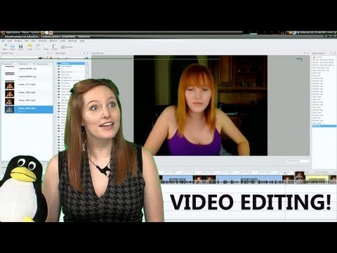 Professional vs Open Source Video Editing