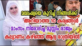 Top 10 Unknown Facts about Malaysia | മല...