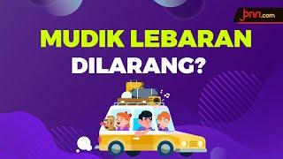 Soal Mudik Lebaran 2020, Begini Kata Opung Luhut - JPNN.com