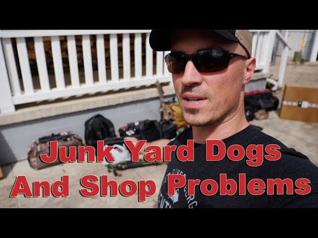Junk Yard Dog, an Anniversary and Shop Problems