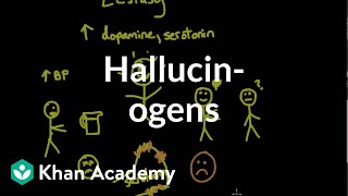 Psychoactive drugs: Hallucinogens | Processing the Environment | MCAT | Khan Academy