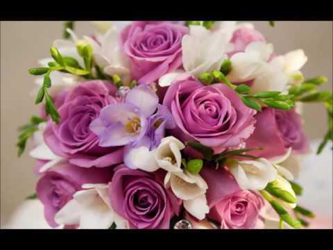 Florist Norwood Ma A Bella Mia Flower Shop