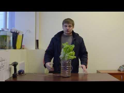 видео: Гидропоника из подручных материалов. Все просто ! hydroponics