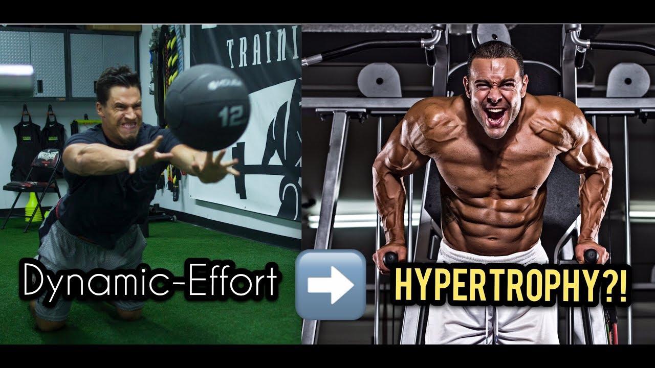 Dynamic Effort Method for...Hypertrophy