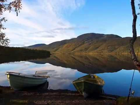 Dovrefjell–Sunndalsfjella National Park  Attractions in Rondane and|  Top things to do in Dovrefjell