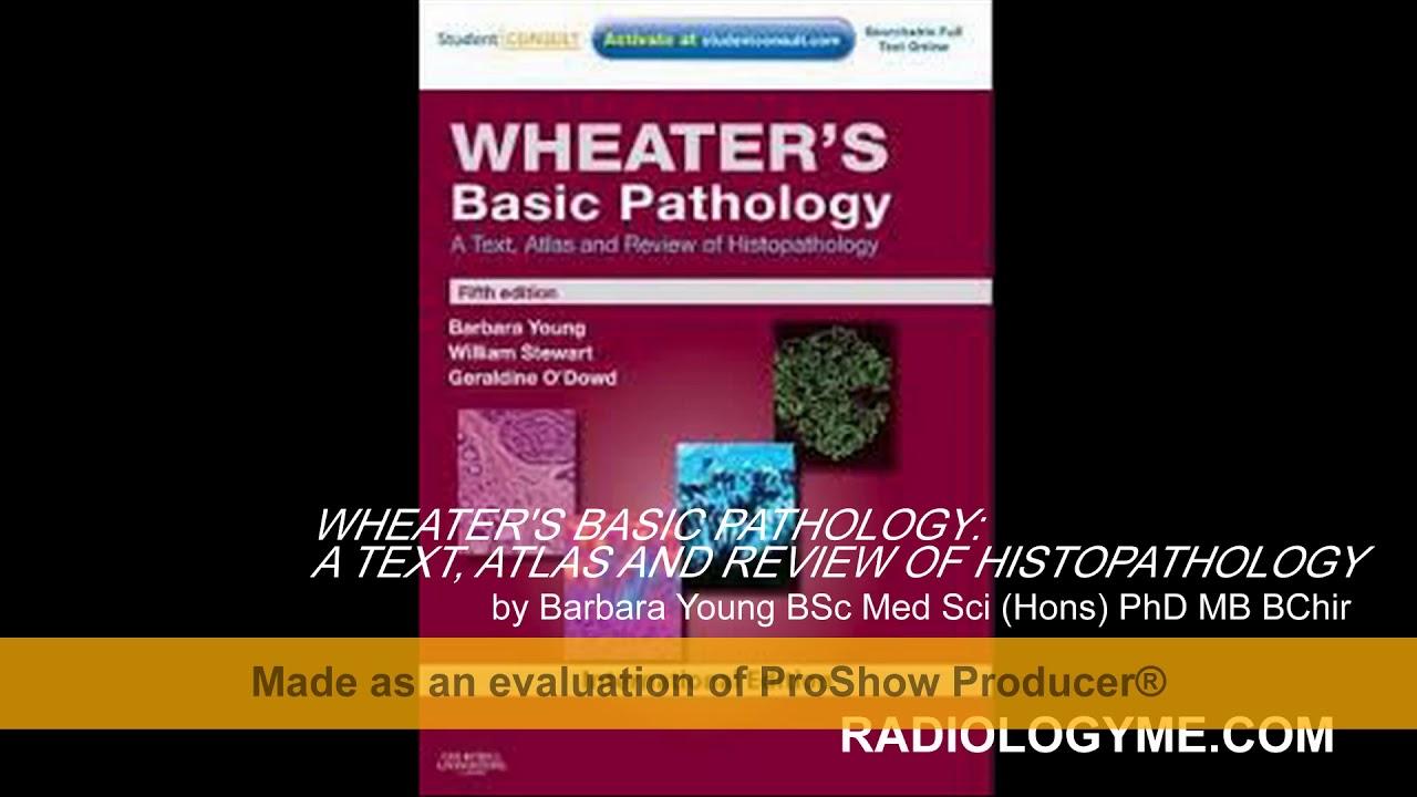 Comprehensive Cytopathology Pdf