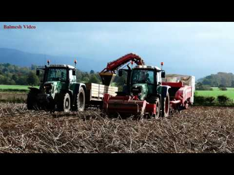 Potato-Harvest with two Harvesters.  Fendt, John Deere and New Holland Action.
