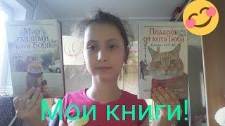 """Обзор книг""""Мир глазами кота Боба,Подарок от кота Боба""""(Джеймс БОУЭН)"""