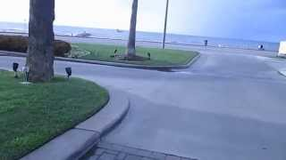 A Walk On The Galveston Seawall