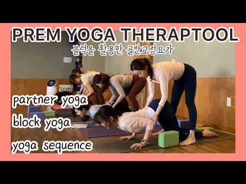 테랍툴요가 블럭편2/beginner yoga/hipopening yoga/back pain/splits