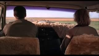 Dumb & Dumber: That John Denver is full of shit man