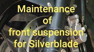 Silverblade 250 EFI. Front suspension maintenance