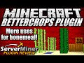 How to grow more crops in Minecraft with BetterCrops Plugin