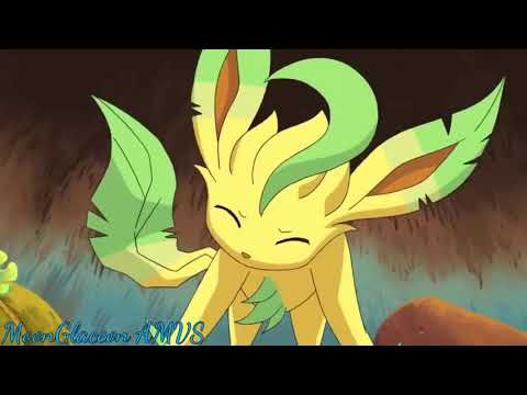 Eeveelutions AMV ~ Run Wild (HD)  Thank You For 1K Subs!