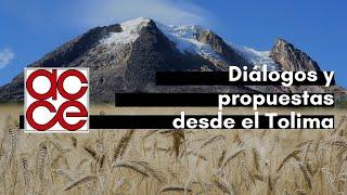 Diálogos y propuestas desde el Tolima. Región central (3)