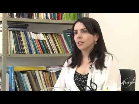 Pesquisas da UFSCar analisam processos decisórios do STF