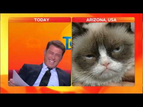 Anchor loses it in Grumpy Cat interview