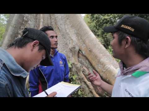 Social Forestry - A Solution for Climate Change