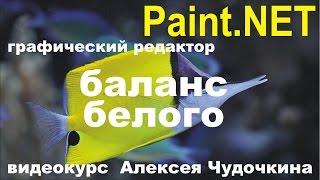 Как сделать цветокоррекцию в Paint.NET