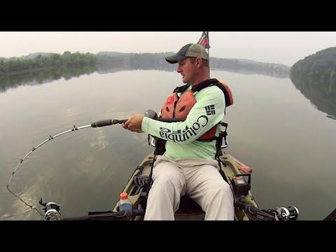Struggling Through The Catfish Spawn