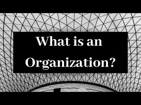 What is an organization? in Urdu/Hindi