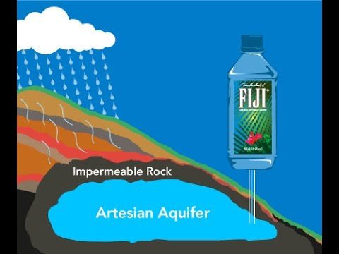Amazon. Com: fiji natural artesian water, 16. 9 fl oz (pack of 24): grocery & gourmet food. What other items do customers buy after viewing this item?