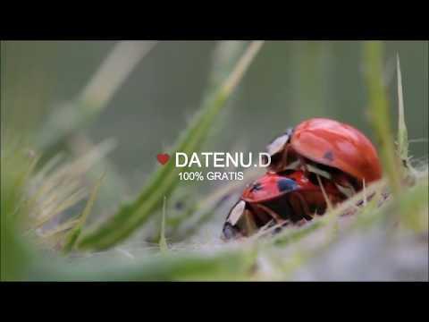 DateNU.dk - 100% GRATIS