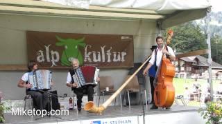 Alpabfahrt 2011 in St. Stephan / Schweiz - Video 4