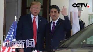 [中国新闻] 新闻观察:安倍热情接待特朗普 难掩日美多重分歧 | CCTV中文国际