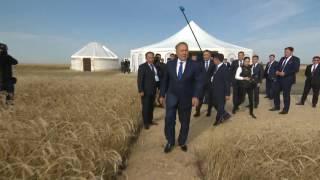 Нурсултан Назарбаев ознакомился сходом уборочной страды в Костанайской области