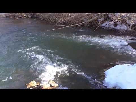 Река Олым в Липецкой области.