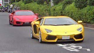 【大黒PA】スーパーカー加速サウンド/Supercars sound in Japan. Aventador, R8, Speciale, 365BB and more❕