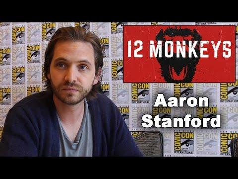 12 Monkeys  Aaron Stanford