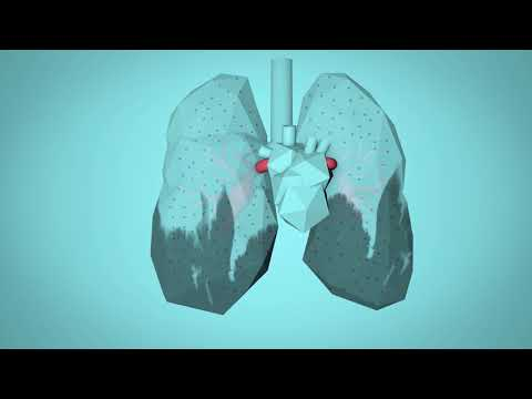 WHO: Breathe Life - How air pollution impacts your body