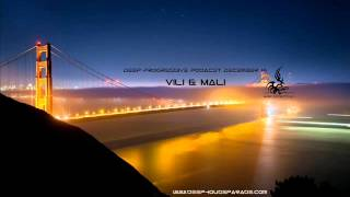 Deep Progressive - Vili & Mali Podacst-December (Mix) On Deep House Parade mp3