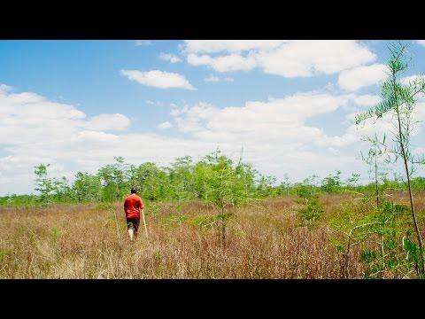 Conquering Florida: Tamiami Triathlon Through the Everglades