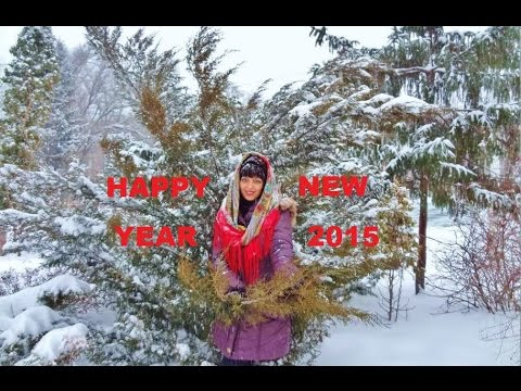 Russian new year wishes to you youtube russian new year wishes to you m4hsunfo