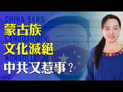 天路漫游:内蒙古文化灭绝前上演《最後一课》,中共利用孔子学院和简化字破坏民族文化 ,没有党文化的蒙古国歌真好听