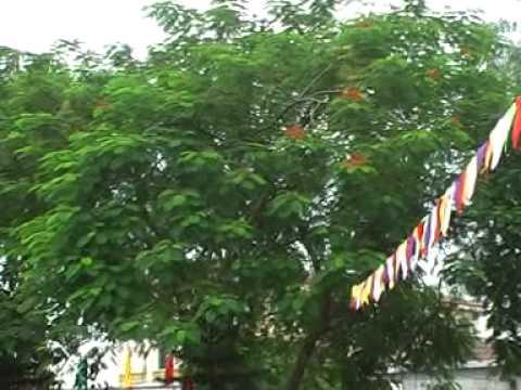 Trường THCS Sông Lô Vĩnh Phúc